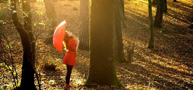 意外な真実!?女性の抜け毛が最も多くなる季節「秋」